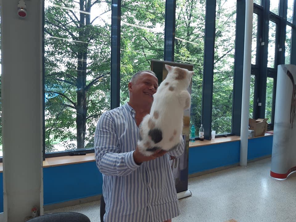 Międzynarodowa Wystawa Kotów Rasowych Ostrawa , Czechy.