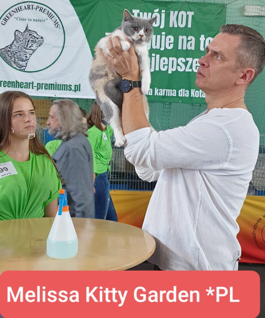 Międzynarodowa Wystawa Kotów Rasowych Warszawa🥇🥇🥇