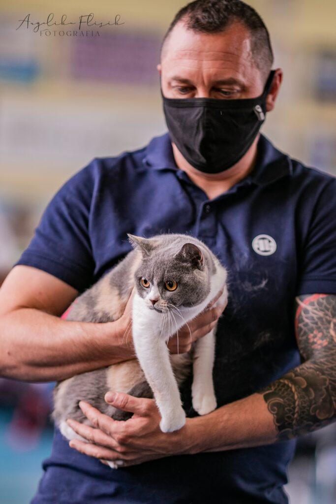 Międzynarodowa Wystawa Kotów Rasowych -Tczew